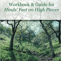 Hinds' Feet Workbook